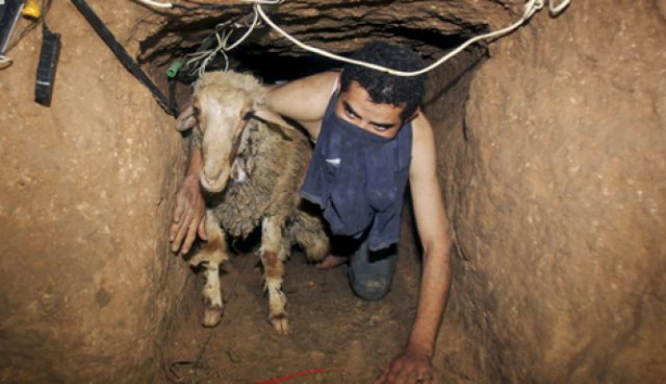 Smuggling through the tunnel network helped alleviate poverty in Gaza